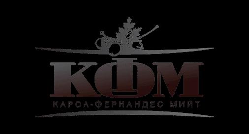 Лого на КФМ Партньори