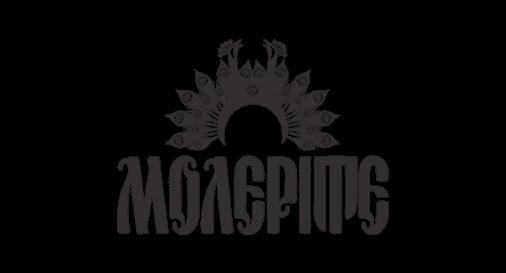 Лого на Молерите Партньор